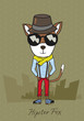 Cool to the max hipster fox in the hat