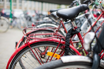 Bike rental service - Many bikes standing in bike stands