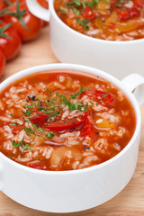 tomato soup with rice, vegetables and herbs, close-up