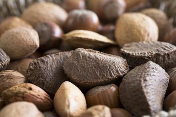 Mixed Nuts Close Up