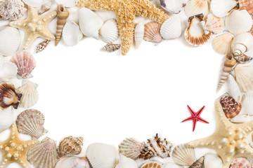 Seashells frame. Isolated on white background.