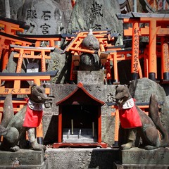 Kyoto, Japan - Fushimi Inari