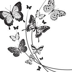 design of different red butterflies
