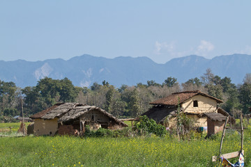 Traditional tharu village in Bardia, Nepal