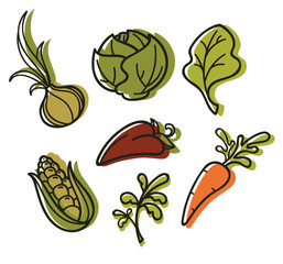 vector collection of vegetables images in hand drawn style