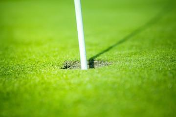 golf hole on green