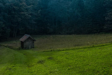 Verlassenes Haus im Wald