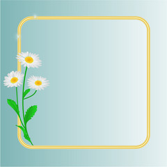 Daisy spring flower blue background space for text vector
