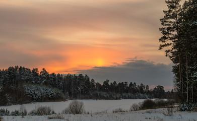 зимний пейзаж на закате в лесу