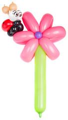 Balloon flower with ladybug