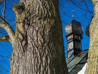 Baum beschützt kleine Kapelle in Bayern