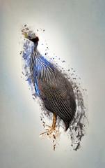 Bird, abstract animal concept