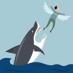 Man flying away from a shark