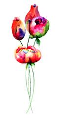 Tulips and Peony flowers