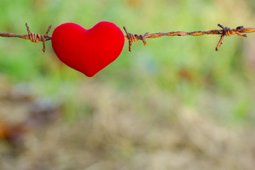 red heart and barbed wire. Love
