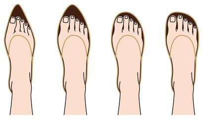 靴の形と足