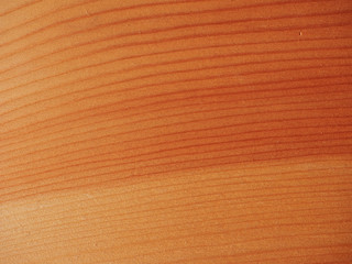 Larch wood background