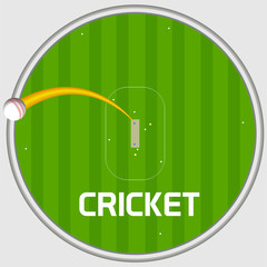 Cricket sports concept with sixer shot on stadium background.