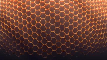 honey comb geometry