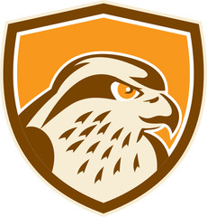 Peregrine Falcon Head Shield Retro