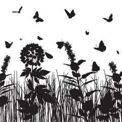 butterflies over the meadow grasses and flowers