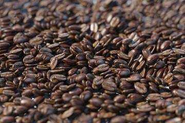 Viele Kaffeebohnen für Kaffee