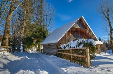 Winter path in the Alpine meadow
