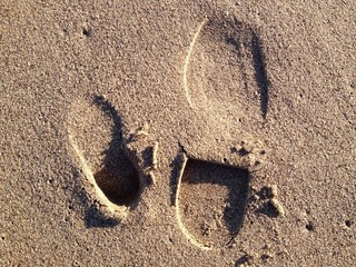 father and son's footprints in the sand