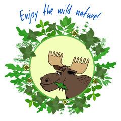Enjoy The Wild Nature