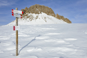 Trentino Dolomiti  Passo Rolle - trekking Cristo pensante