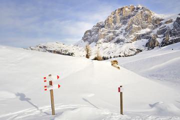 Trentino Dolomiti Pale di San Martino Passo Rolle Val Veneggia
