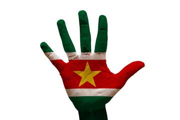palm flag suriname