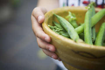 Person holding bowl of freshly picked peas.