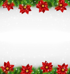 Shiny green pine branches like frame with flower of poinsettia i