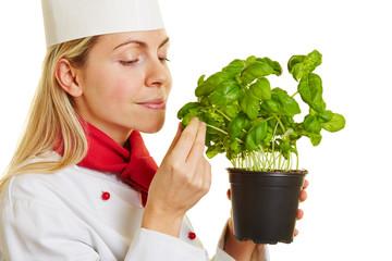 Frau als Köchin riecht an Blatt Basilikum