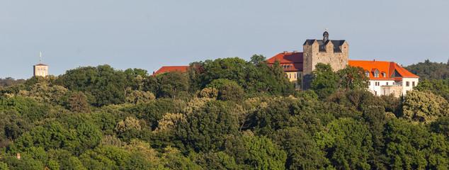 Blick auf das Schloss Ballenstedt