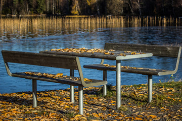 Table and Benches with Leaves