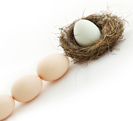 One egg inside the nest and other in queue