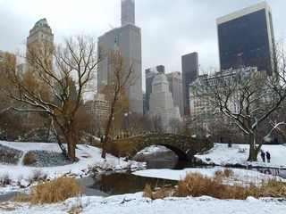 New York City in the winter