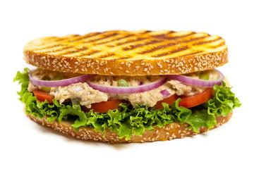 Grilled Tuna Panini Sandwich on white background