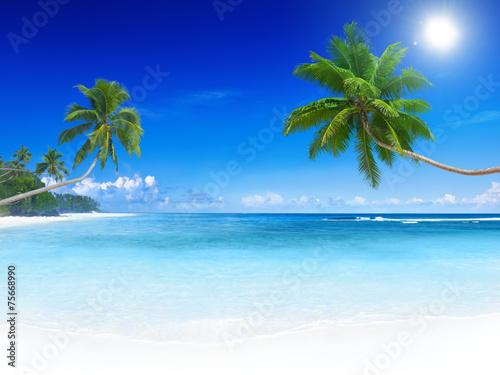 Deurstickers Eiland Tropical Paradise Beach