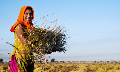 Indian Girl Working Farm Agriculture Concept