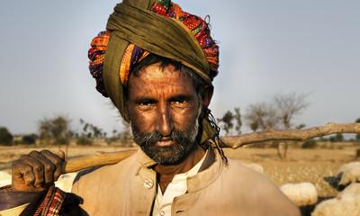 Indigenous Indian Man Herding Sheep Concept