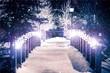 canvas print picture - Park Bridge in Winter