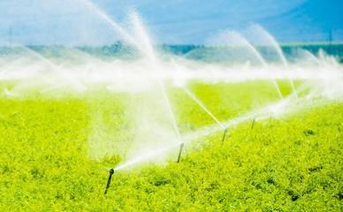 Farm Field Irrigation