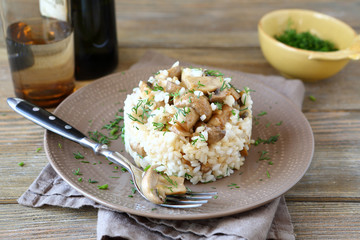 Rice with mushrooms on a plate