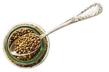 Jar of coriander seeds isolated on white