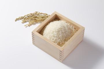 米 お米 枡