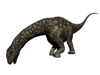 argentinosaurus dinosaur - 3d render