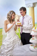 Bride and groom cutting the wedding cake
